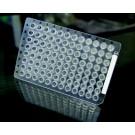 Simport Thin-Wall PCR Plates